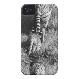A tiger with her two cubs at Whipsnade Zoo. Case-Mate iPhone 4 Case