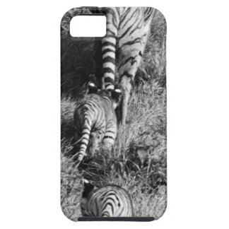 A tiger with her two cubs at Whipsnade Zoo. iPhone SE/5/5s Case