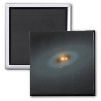 A tight pair of stars and a surrounding disk magnet