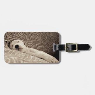 A Tired Dog Luggage Tag