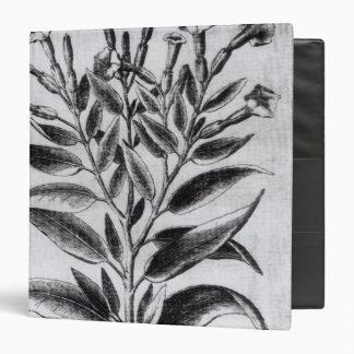 A Tobacco Plant, 1622 Binder