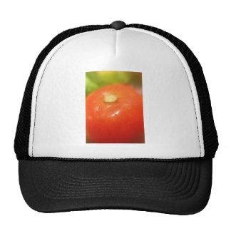 A Tomato Infant Bodysuit Mesh Hats
