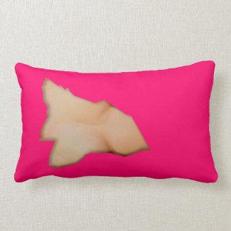 a torn pillows