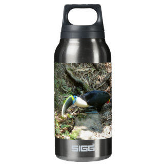 A Toucan Perches on tree roots on the forest floor Insulated Water Bottle