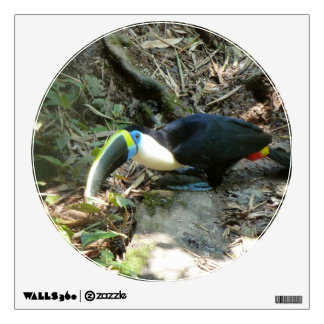 A Toucan Perches on tree roots on the forest floor Room Graphic