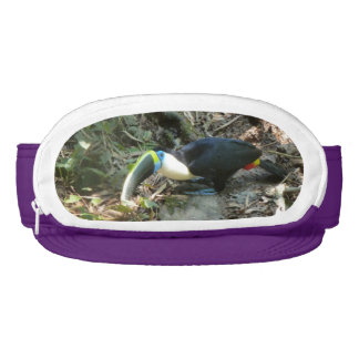 A Toucan Perches on tree roots on the forest floor Visor