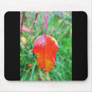 A Touch of Autumn Mouse Pad