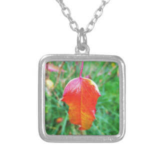 A Touch of Autumn Silver Plated Necklace