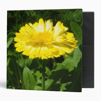 A Touch Of Yellow Binder