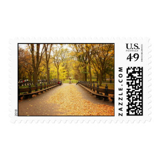 A Trail of Autumn Leaves, Central Park, NYC Postage Stamp