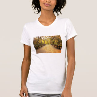 A Trail of Autumn Leaves, Central Park, NYC T-Shirt