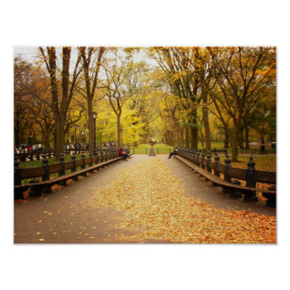 A Trail of Autumn Leaves, Central Park, Small Poster