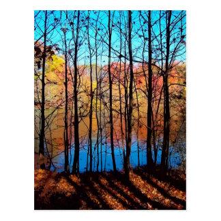 A través de árboles postal