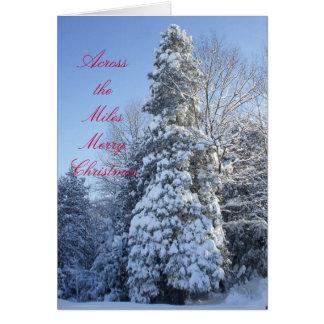 A través de la Milla-Nieve cubierta árboles Tarjetón
