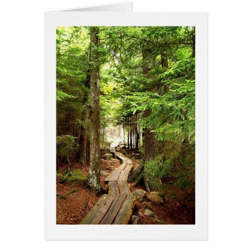 A través de las maderas tarjeta pequeña