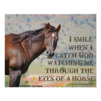 A través de los ojos de un caballo póster