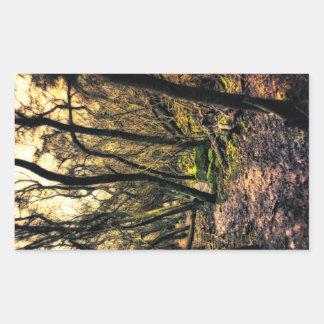 A través de los pegatinas salvajes de maderas rectangular pegatina