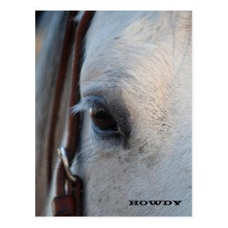 A través del ojo de una postal del caballo