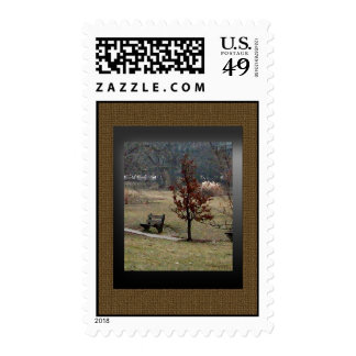 A Tree and the Bench Stamps