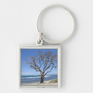 A tree decorated with old buoys on the beach in Silver-Colored square keychain
