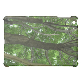A tree high view into the forest! cover for the iPad mini