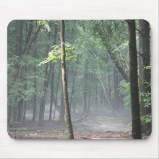 a tree in a beam of sunshine after rain mouse pad
