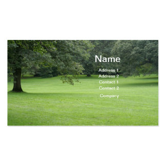 A Tree in a Field of Green Double-Sided Standard Business Cards (Pack Of 100)