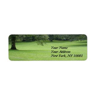 A Tree in a Field of Green Custom Return Address Labels