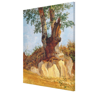 A Tree in Campagna, 1822-23 Canvas Print