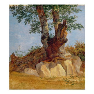 A Tree in Campagna, 1822-23 Poster