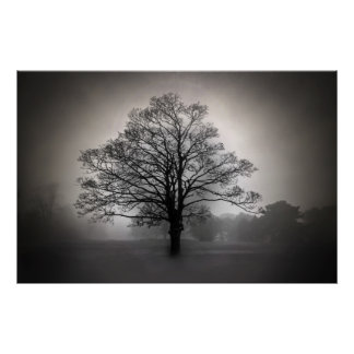 A Tree in the Fog Poster