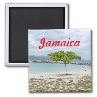 A TREE ON DEAD END BEACH FRIDGE 2 INCH SQUARE MAGNET