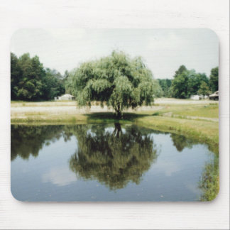 A Tree s Refelction Mouse Pads