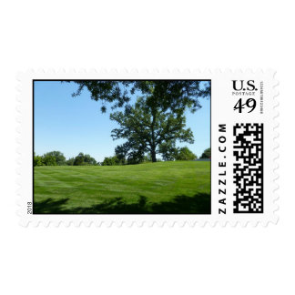 A tree stands alone stamp