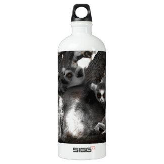 A trio of South African Lemurs Aluminum Water Bottle