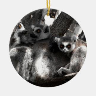 A trio of South African Lemurs Ceramic Ornament
