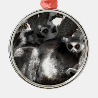 A trio of South African Lemurs Metal Ornament