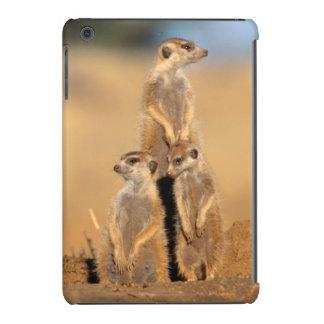 A trio of Suricates sunning at their den iPad Mini Retina Case
