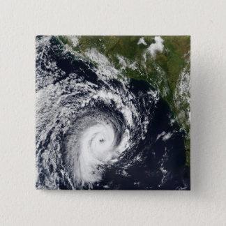 A tropical cyclone button