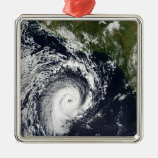 A tropical cyclone metal ornament