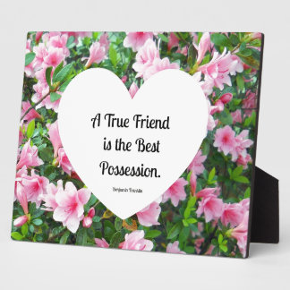 A true friend is the best possession. plaque