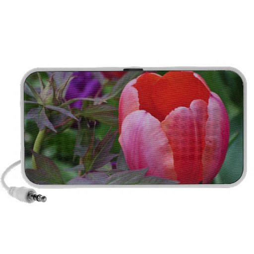 A Tulip And Other Leaves II Laptop Speaker