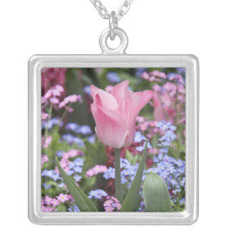 A tulip at Luxembourg Gardens, Paris, France Silver Plated Necklace