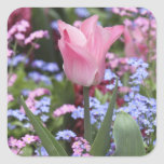 A tulip at Luxembourg Gardens, Paris, France Stickers