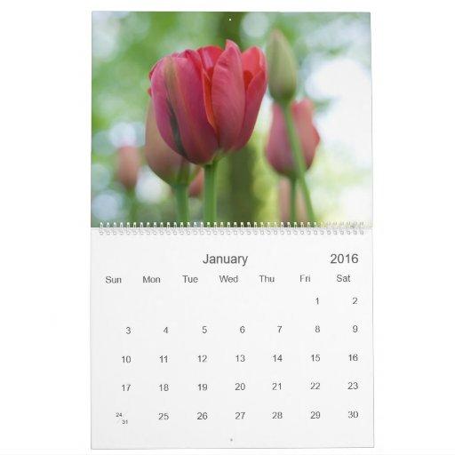 A Tulip Garden 2010 Calendar