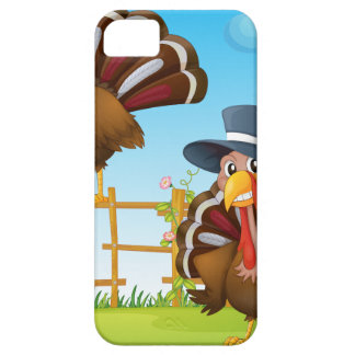 A turkey above the wooden fence and a turkey weari iPhone 5 cover