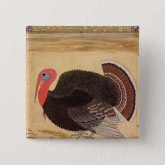 A turkey-cock, brought to Jahangir Pinback Button