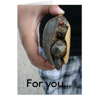 A turtle for you card