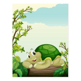 A turtle lying on dry wood postcard