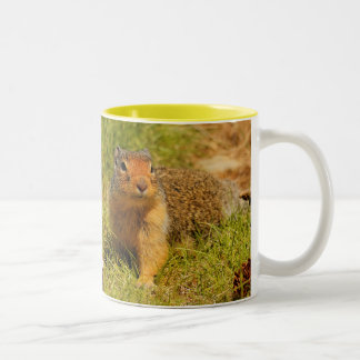 A Twitchy-Nosed Columbian Ground Squirrel Two-Tone Coffee Mug